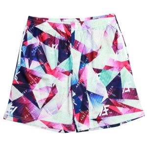 【受注生産アイテム】 PASSCODE X AFFECTER / MESH SHORTS (MULTI)