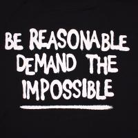FAMOUS STARS AND STRAPS / DEMAND THE IMPOSSIBLE TEE (BLACK)